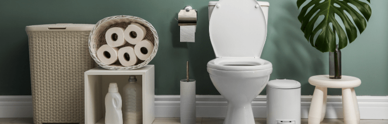 World Toilet Day 2020 Bladder Bowel Uk Bbuk